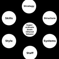 McKinsley 7s framework